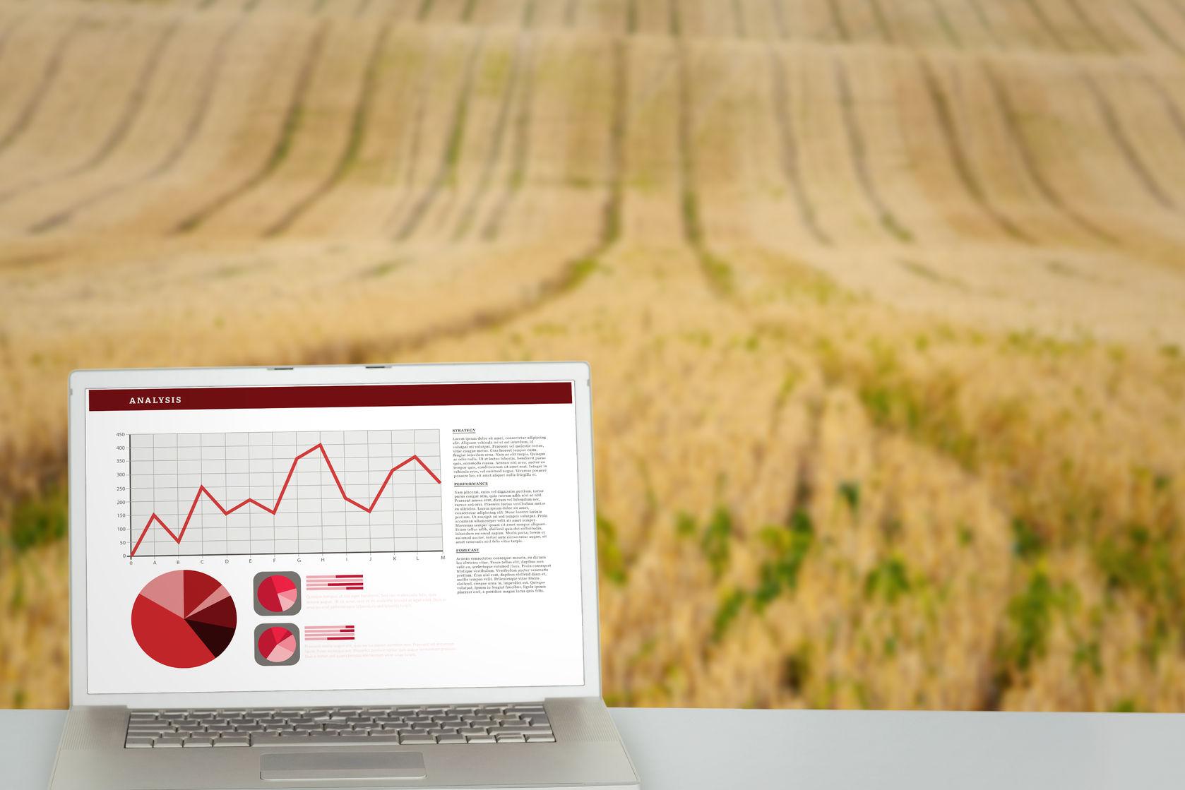 Revenus agricoles: bilan et prévisions 2017